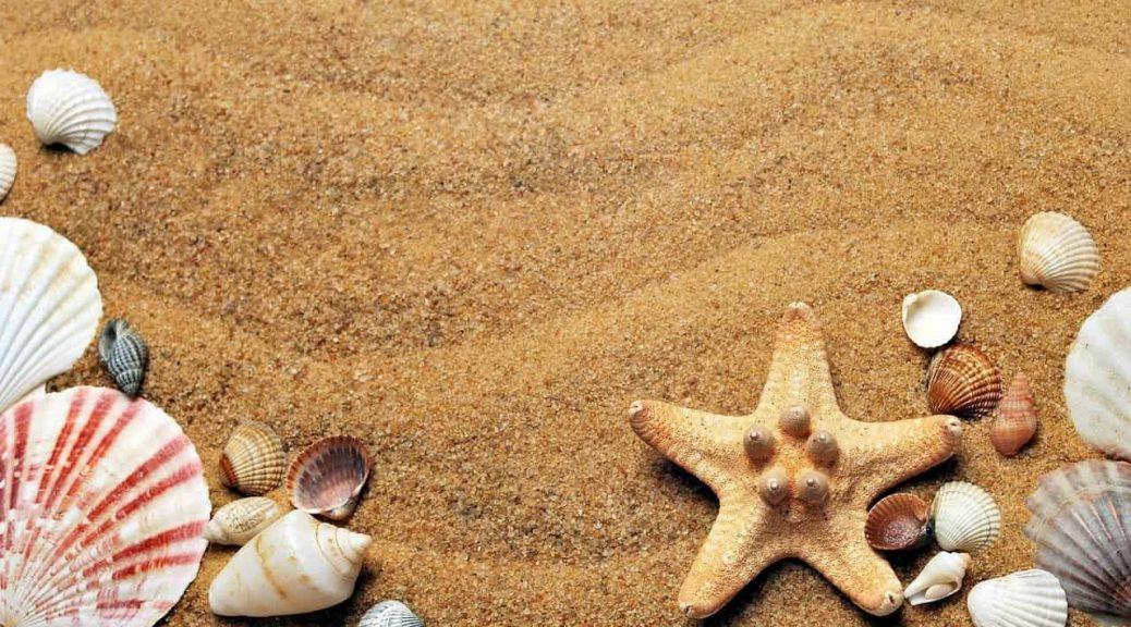 Quelles solutions d'hébergement pour des vacances à la plage ?